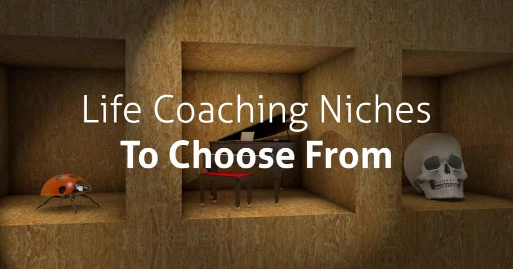 15 Life Coaching Niches to Choose From life coaching niches