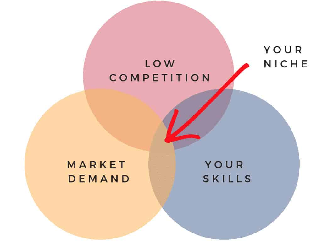 where our coaching niche should be diagram