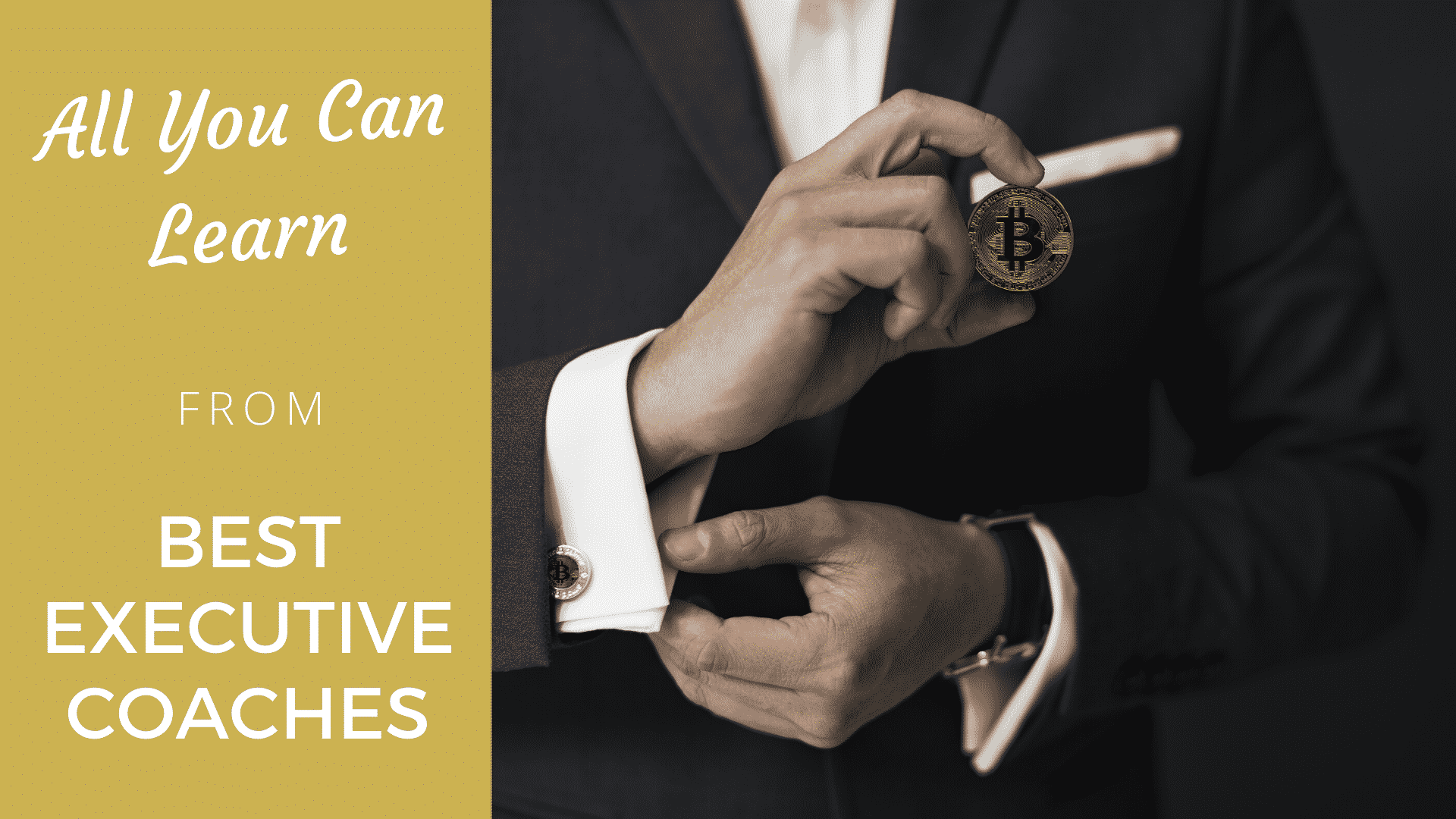 All You Can Learn from Best Executive Coaches best executive coaches