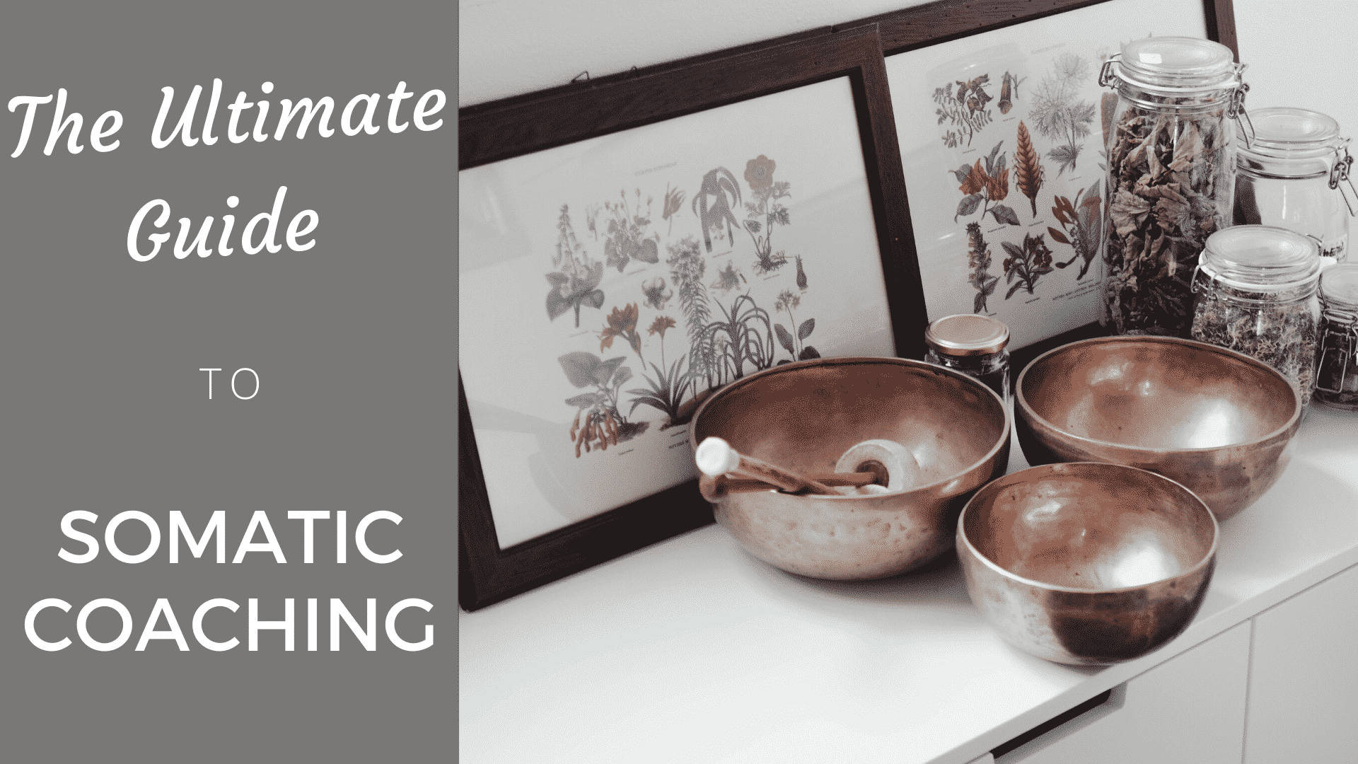 The Ultimate Guide to Somatic Coaching (2020) somatic coaching
