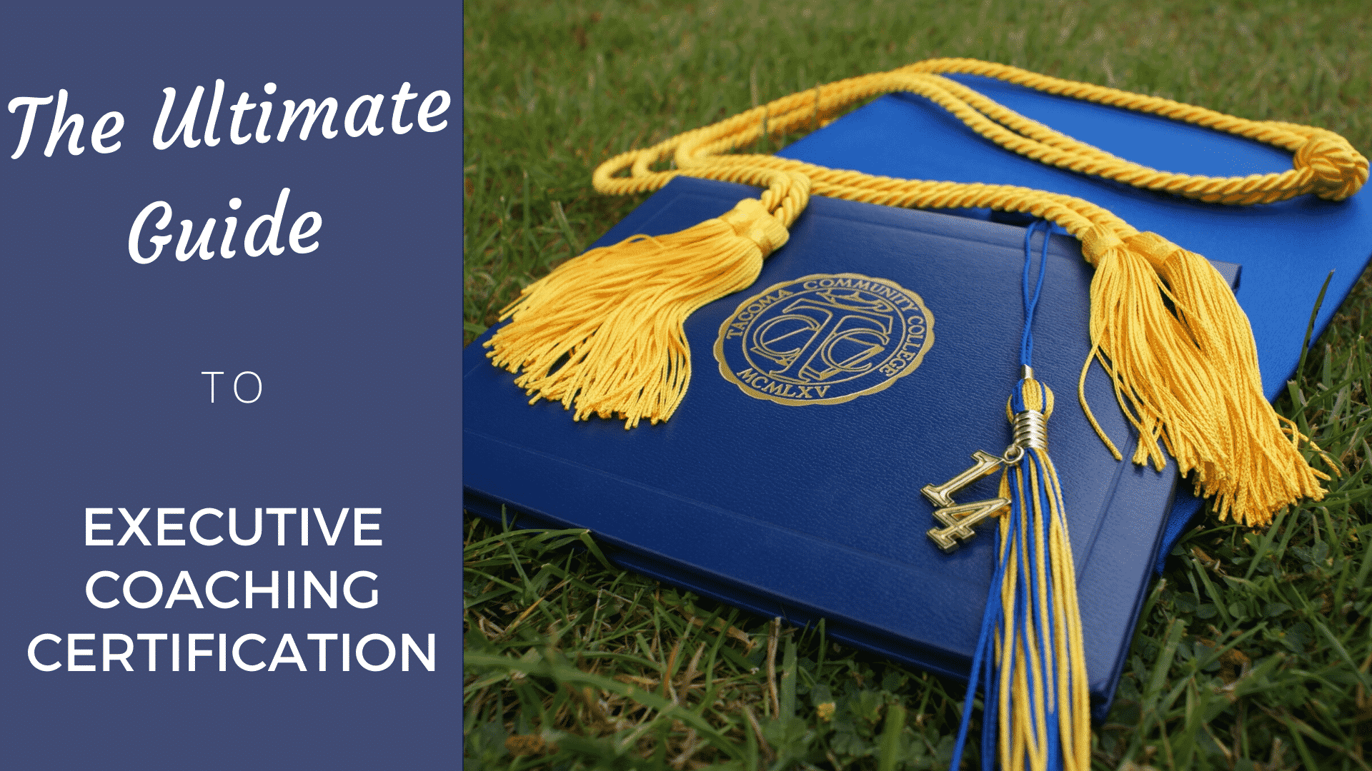 Executive Coaching Certification: The Ultimate Guide in 2020