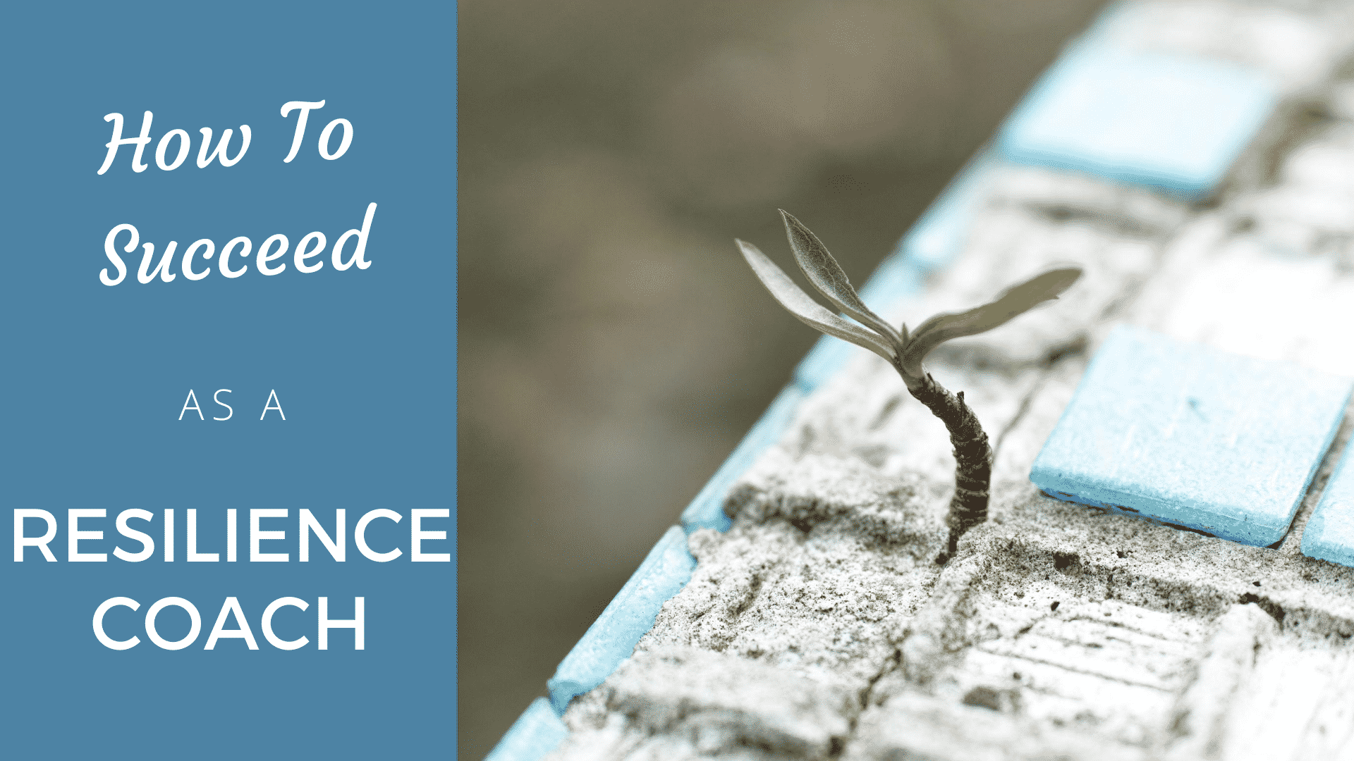 Will A Resilience Coach Survive or Thrive In 2020? resilience coach
