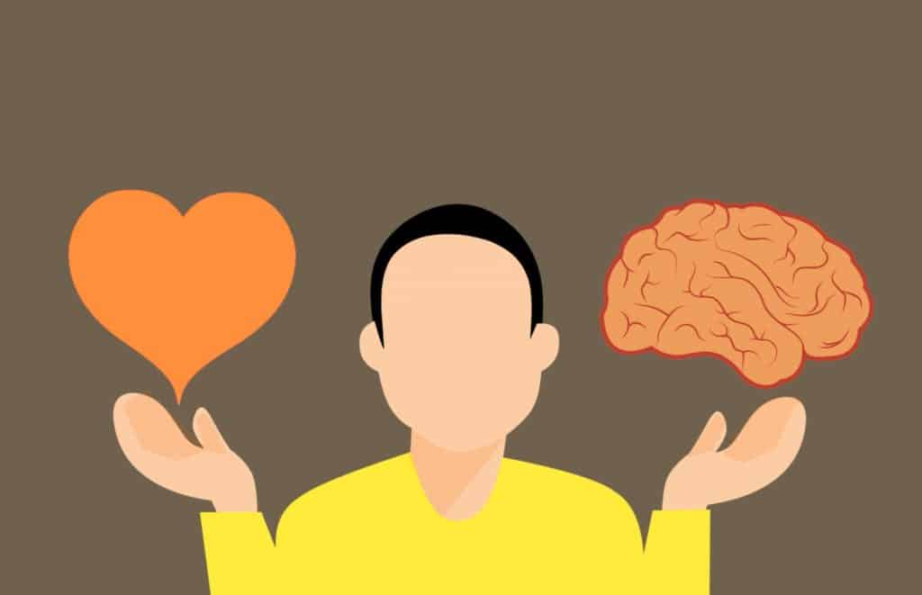 decision, brain, heart