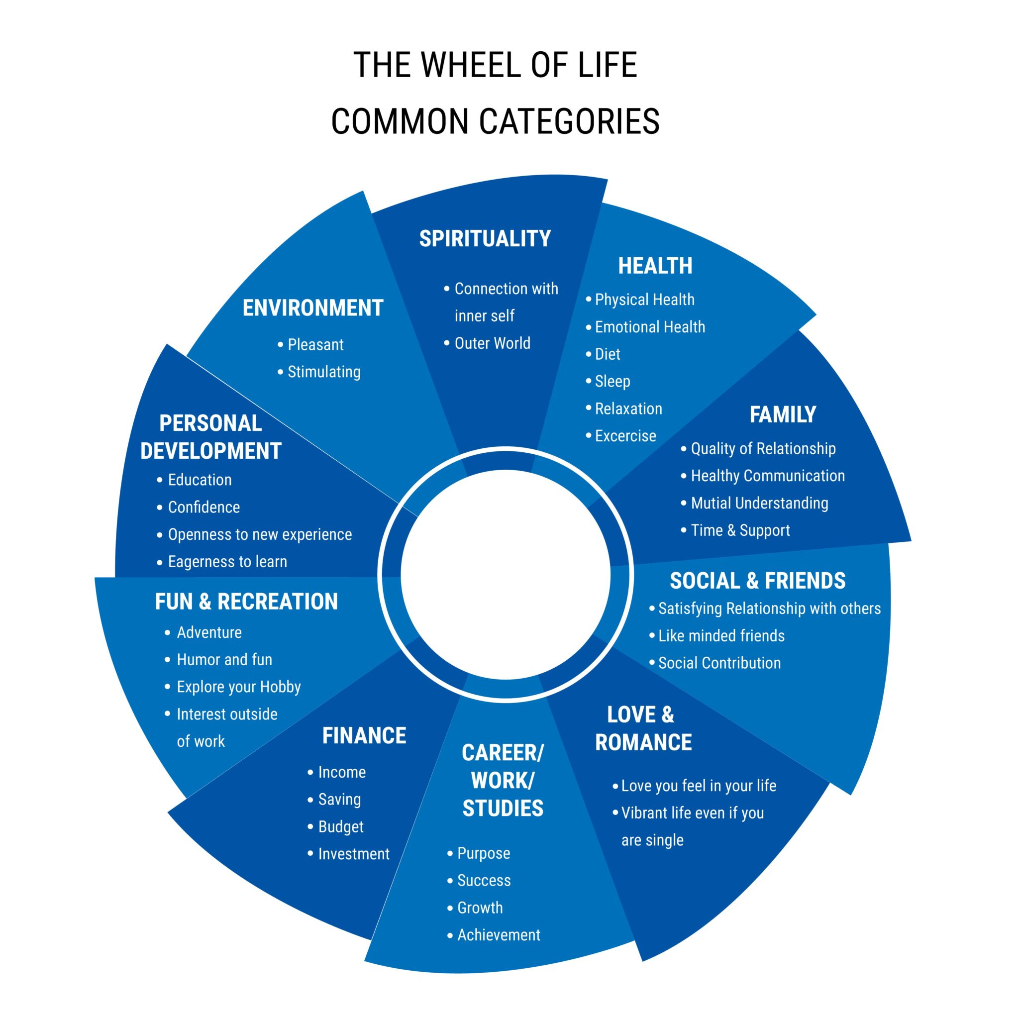 THE WHEEL OF LIFE COMMON CATEGORIES