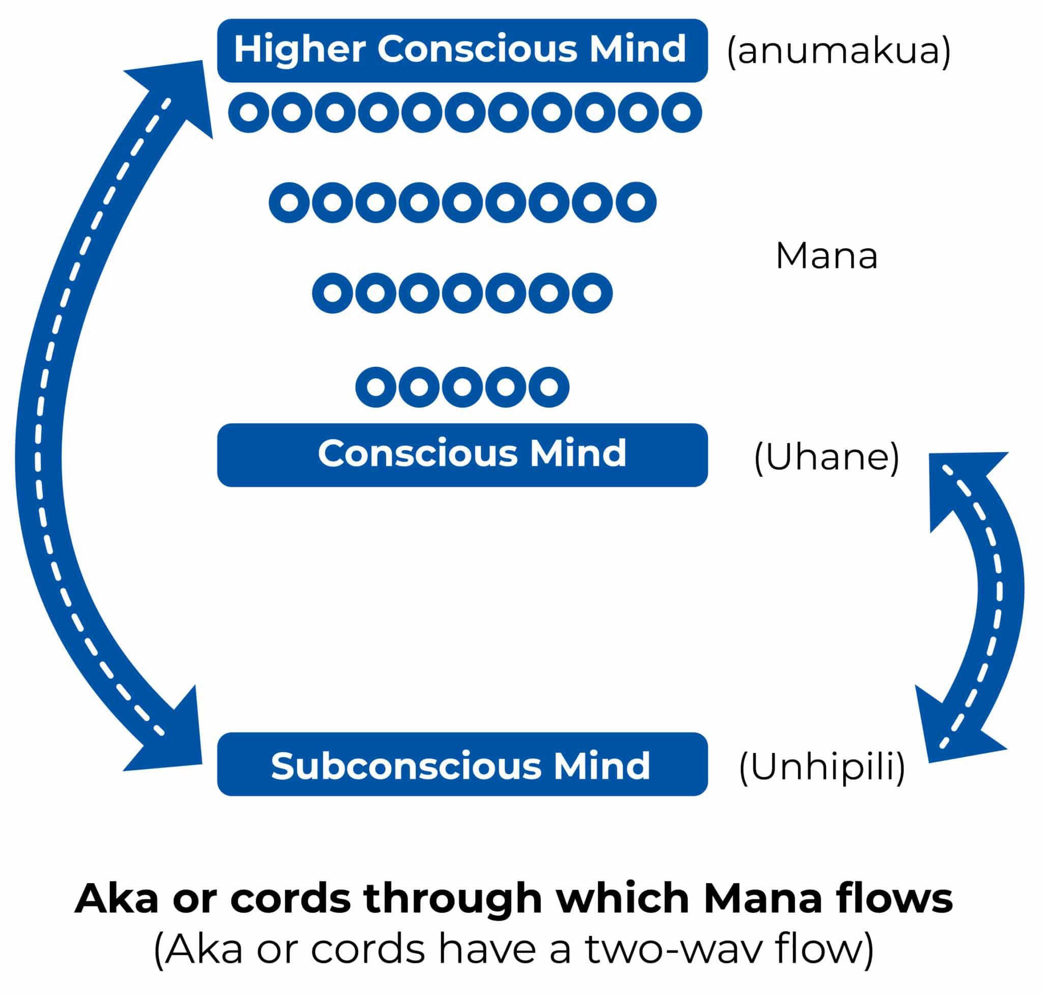THE INTERRELATIONSHIPS OF THE THREE MINDS