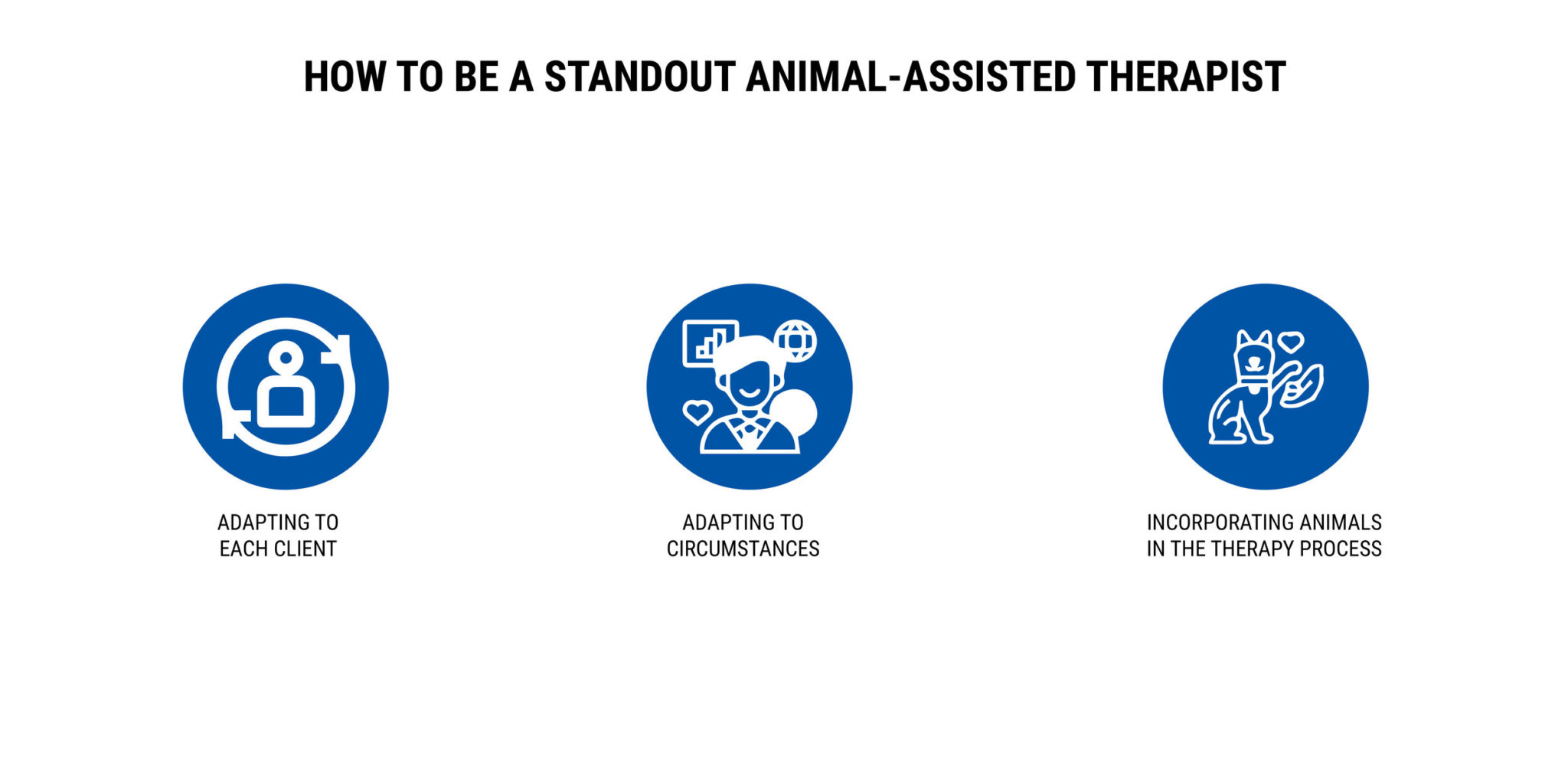 HOW TO BE A STANDOUT ANIMAL-ASSISTED THERAPIST