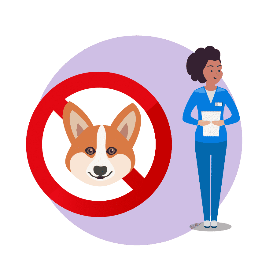 How To Become An Animal-Assisted Therapist The Definitive Guide [2021-22]